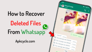 How to Recover Deleted Files from Whatsapp